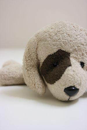 Toy dog,close up photo