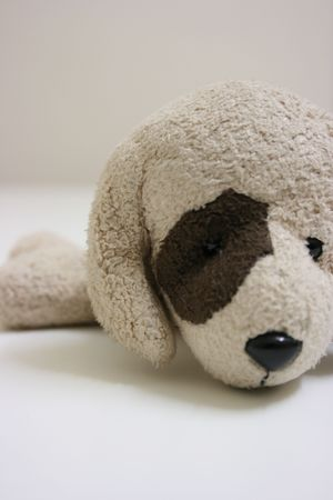 Toy dog,close up