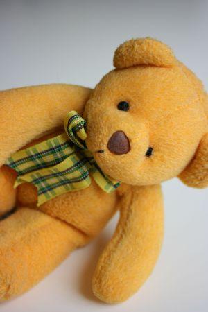 Curious stuff toy bear Stock Photo - 4460012
