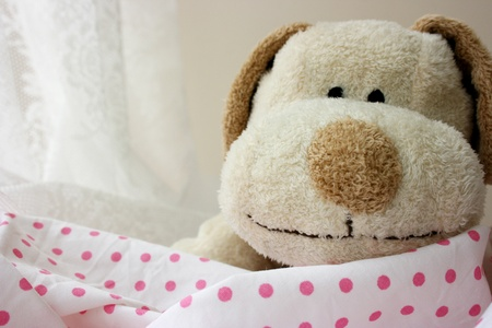 smile please: Stuffed toy puppy