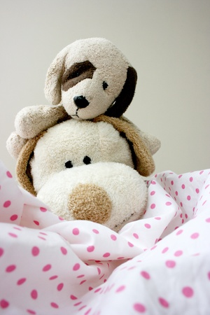 2 stuffed toy puppies photo