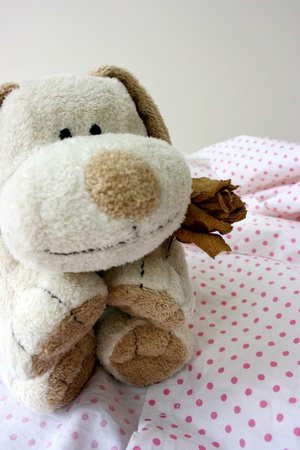 forgiving: Toy puppy holding a dry rose Stock Photo