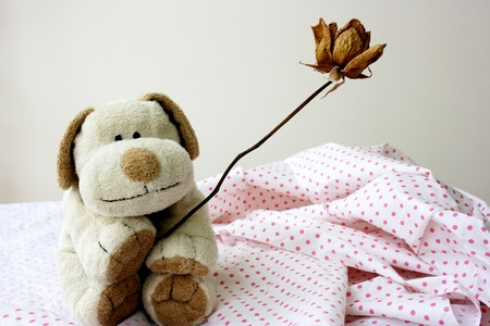 soft toy: Soft toy puppy holding dried rose Stock Photo