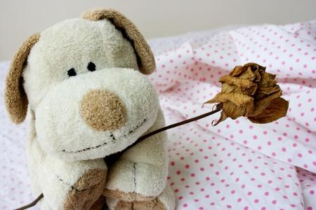 perdonar: Soft cachorro toy dando a flor