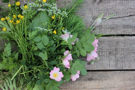 Bunch of green wild plants, pink rose hips, and yellow buttercups flowers on a rough wooden table. Summer still life