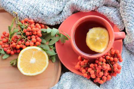 Cup of tea with lemon, red rowan berries and knitted sweater on wooden table. Cozy autumn composition