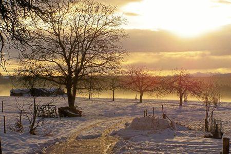 冬 写真素材