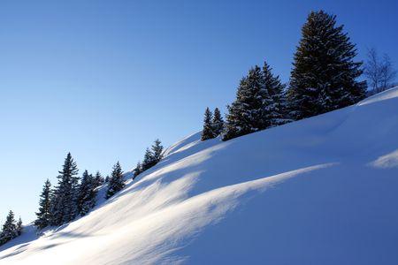 Winter Stock Photo - 4748037