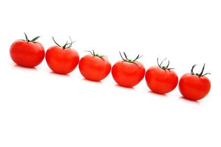 Tomatos Stock Photo - 4846773