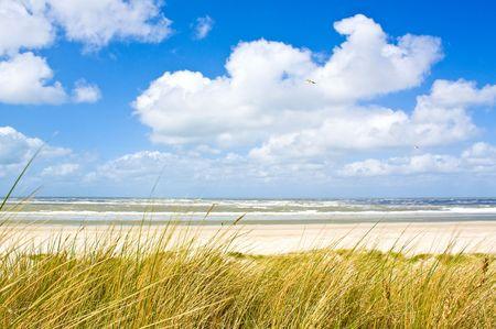 北の海 写真素材
