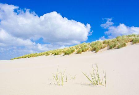 Beach Stock Photo