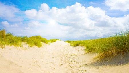 Idyllic dunes with sunlight Stock Photo