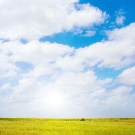 Idyllic lawn with sunlight Stock Photo - 5647825