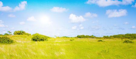 Idyllic lawn with sunlight Stock Photo - 5647991