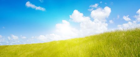 Idyllic lawn with sunlight Stock Photo - 5647928