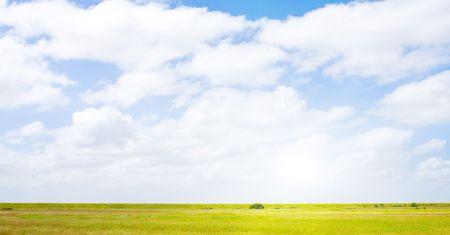 Idyllic lawn with sunlight Stock Photo - 5648051