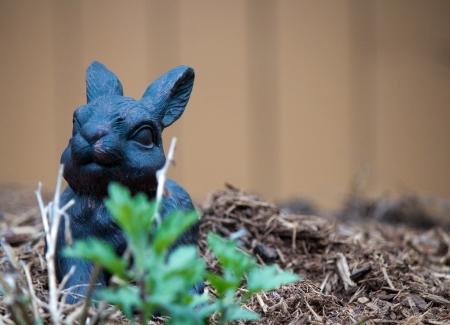 Bunny ornament in the garden 版權商用圖片