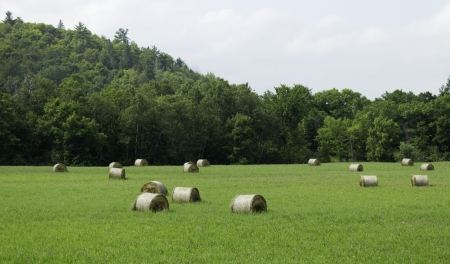 Bails of hay on a farm field  Stock Photo - 17477504