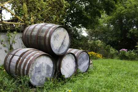 Old stacked beer barrels at the farm