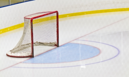 Ice hockey goal and crease in an arena