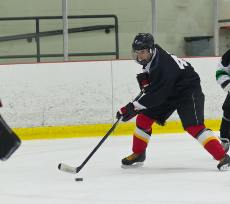 ice arena: Hockey player skates and stickhandles the puck during a game