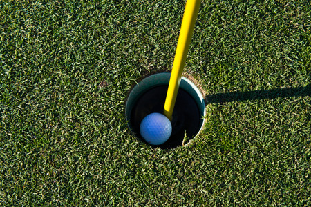 Golf ball in the cup Banco de Imagens