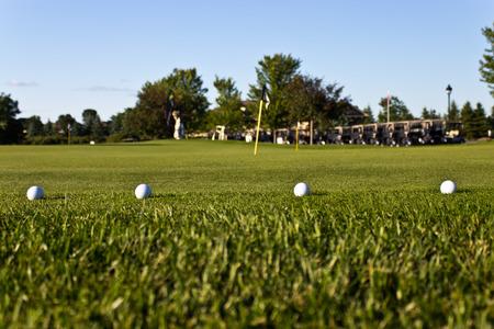 연습 녹색에 골프 공