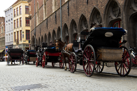 belgian horse: Horse-drawn buggy for tourists in Bruges