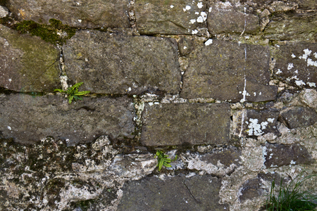 decaying: Decaying gray stone wall Stock Photo