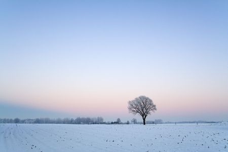 dutch: Winter landscape after sunset with clear blue sky.