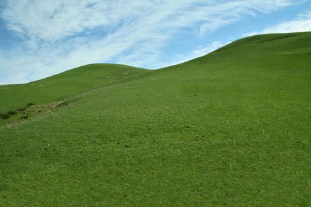 Green grass hill and blue sky Stock Photo - 6689729