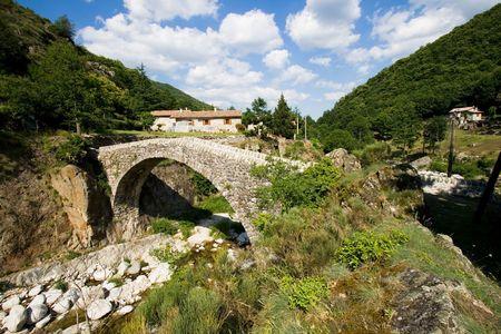 French provence landscape