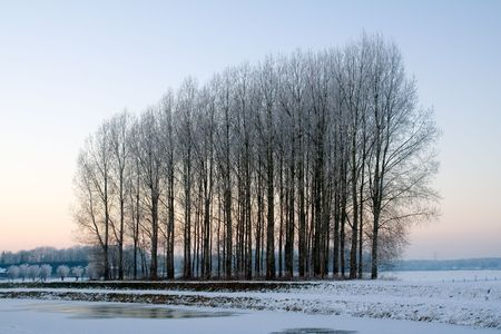 Dutch snow covered landscape during winter