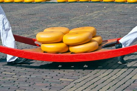 Cheese carried by workers on the Alkmaar cheese market, Holland