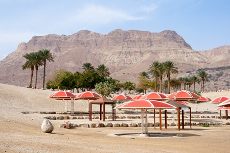 Ein Gedi oase at the Dead Sea. Israel  Stock Photo - 9371338