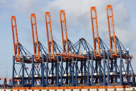 Harbor cranes in the port of Rotterdam