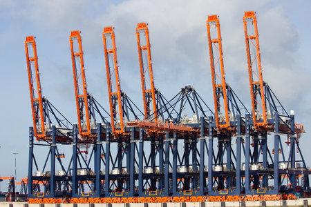 Harbor cranes in the port of Rotterdam