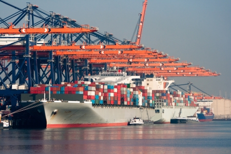 Large harbor cranes loading container ships in the port of Rotterdam.