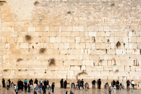 JERUSALEM, ISRAEL - JANUARY 23  Jewish worshipers pray at the Wailing Wall  The most holy site for Jews  January 23, 2011 in Jerusalem, Israel