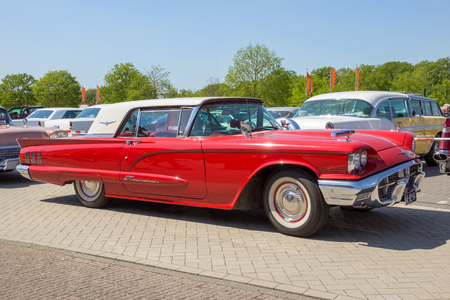 thunderbird: DEN BOSCH, THE NETHERLANDS - MAY 8, 2016: 1960 Ford Thunderbird on the parking lot at the Rock Around The Jukebox event.
