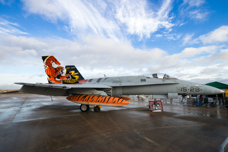 TORREJON, SPAIN - OCT 11, 2014: Special tiger painted Spanish Air Force FA-18 Hornet fighter jet plane on the tarmac of Torrejon airbase.