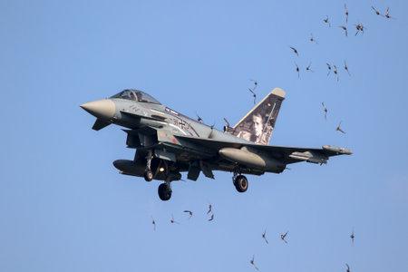 LEEUWARDEN, NETHERLANDS - MAR 28, 2017: Swallow birds dangerously close to a landing Eurofighter Typhoon fighter jet plane. Editorial