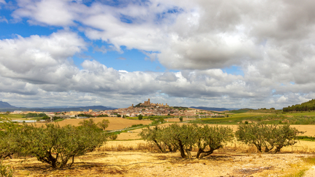Scenic view on a rural Spanish landcape with olive trees in the front and old Artajona town in the background. Navarre, Spain Stock Photo