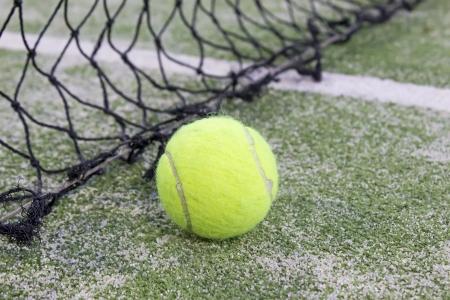 prato sintetico: Tennis o paddle palla in erba sintetica del campo da paddle tennis con rete sullo sfondo
