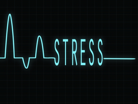 electrocardiogram: Electrocardiogram showing the word Stress Illustration
