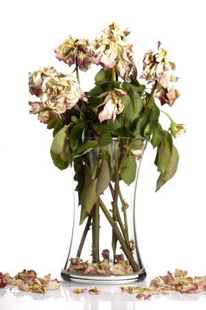 Bouquet of withered roses in glass vase. Stock Photo
