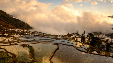 Above the clouds at Duoyishu rice terraces in Yuanyang  Taken at sunrise photo