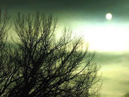 曇りグリーン太陽 写真素材