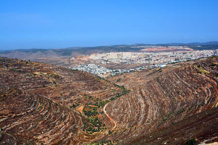 israel farming: Terrace Farming Stock Photo