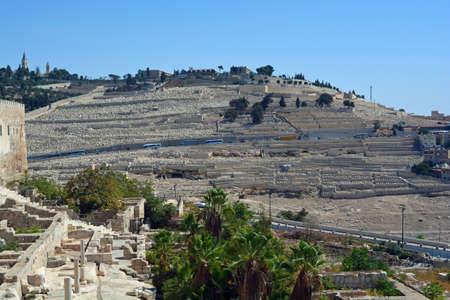 mount of olives: Mount of Olives Stock Photo